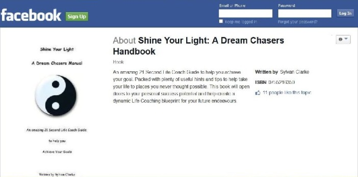Shine your light - a dream chasers manual